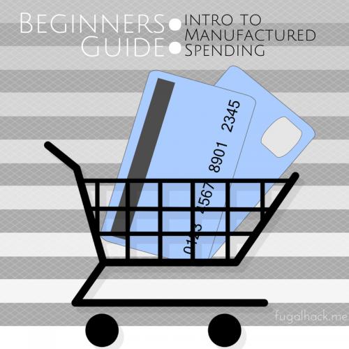 Beginners Guide (2)