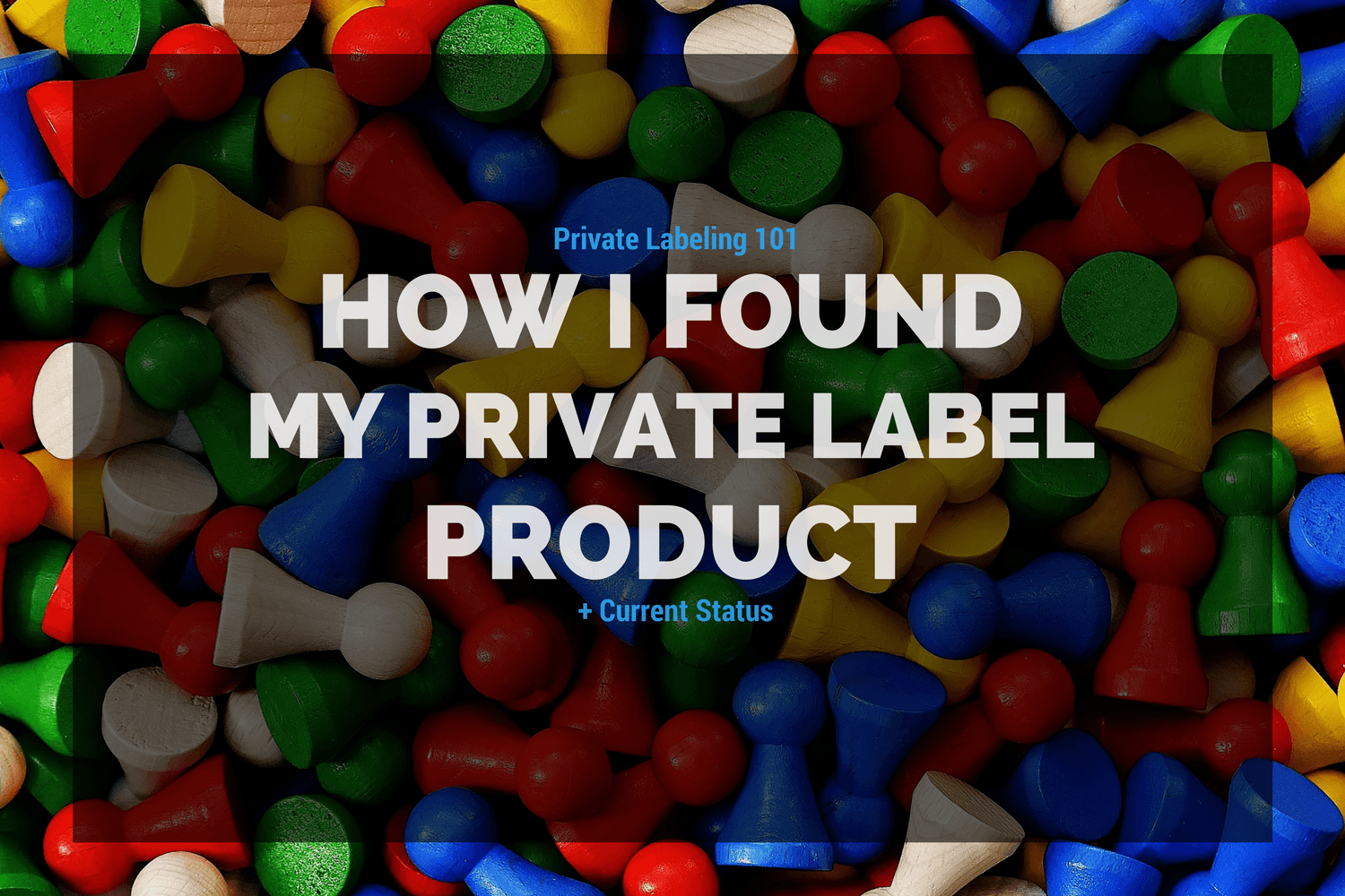Private Labeling 101: How I Found My Private Label Product + Current Status